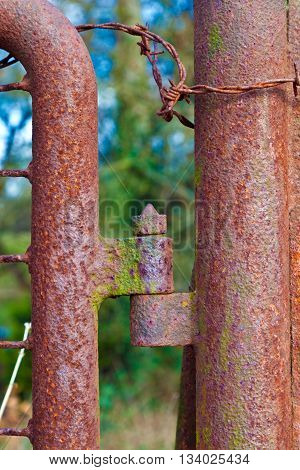Rusty Hinge At A Gate
