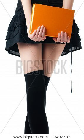 Woman In Skirt And Stockings With Book