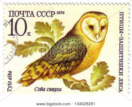 Ussr - Circa 1979: A Stamp Printed In Ussr Shows A Tyto Alba, Series