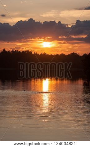 tranquil landscape with reflections on the forest lake at sunset