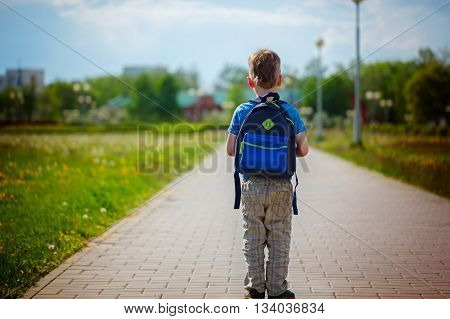 Little boy with a backpack go to school. Back view