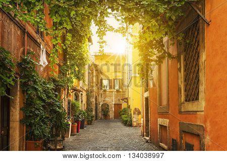 Old street in Trastevere in Rome Italy