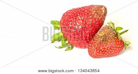 High resolution image of rotten strawberries on a light background