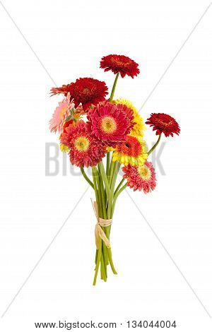 colorful gerber flowers bouquet on white background