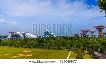 Park Gardens by the Bay in Singapore - nature and travel background