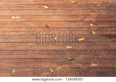 old wood texture with autumn natural pattern