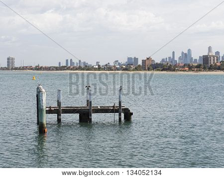Melbourne - March 3 2016: View from a wooden jetty over the city of Melbourne with a berth in the Port Phillip Bay in Victoria and smart white-breasted cormorants March 3 2016 Melbourne Australia