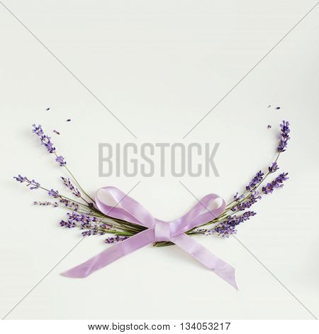 Lavander Flower Background