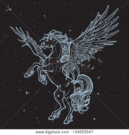 Pegasus greek mythological creature. Legendary beast concept drawing. Vintage tattoo design. Sketch on black nightsky background with stars. Astronomic illustration. EPS10 vector illustration.
