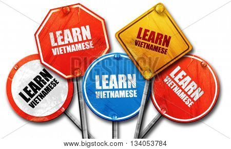 learn vietnamese, 3D rendering, rough street sign collection
