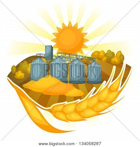 Granary on wheat field. Agricultural illustration farm rural landscape.