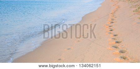 Footprints on beach fading far on distance