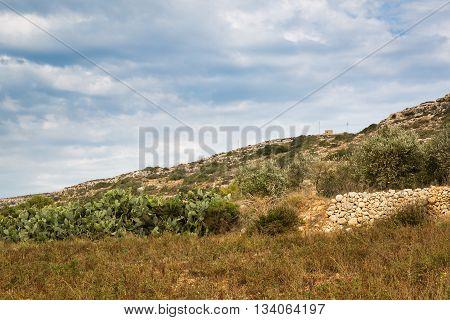 Stony Land In Malta