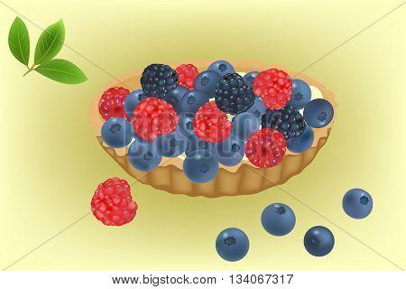 Summer berries cake with blueberries, blackberries and raspberries vector