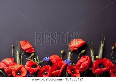Heads of red poppies rye and cornflowers on the bottom of black background top view
