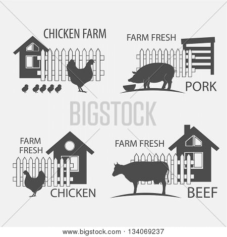 farm chicken pork and cow beef - vector illustrations