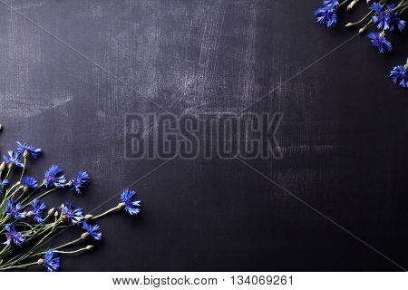 Blue cornflowers on the corners of old blackboard with scratches
