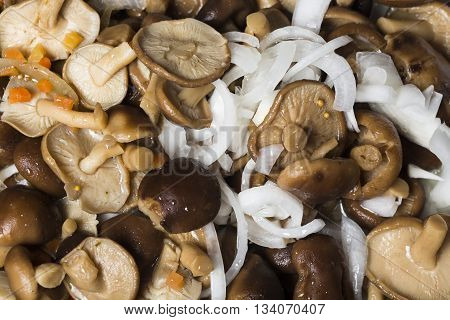 Marinated mushrooms with onion and carrots background