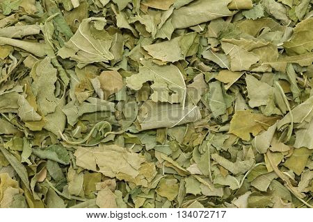 Organic dry passionflower (Passiflora incarnata) leaves. Macro close up background texture. Top view.