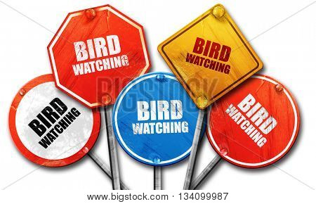 bird watching, 3D rendering, rough street sign collection