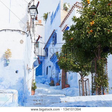 Narrow alleyway with light blue houses  in the medina, Chefchaouen, Morocco