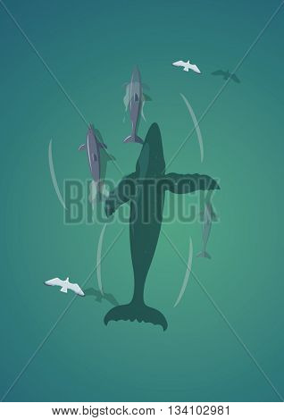 Whale and dolphins.Top view vector illustration.