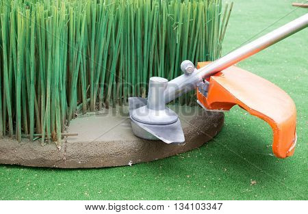 Grass Trimmer Mowing