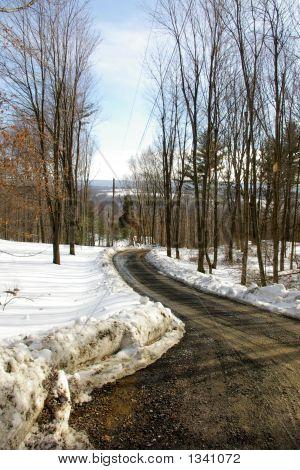 Plowed Winter Lane