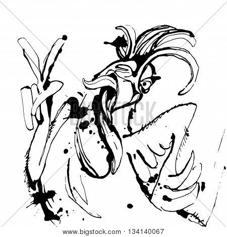 Vector illustration Funny hand drawn cock showing victory sign and winking. Sketch drawing cartoon rooster