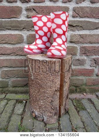 Small pink rainboots with white dots standing on a log