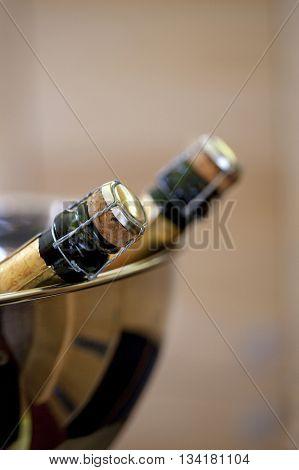 Chmpagne Bottle In A Bucket