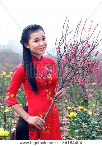 HA NOI, VIET NAM, February 12, 2016 girl Ha Noi, charming, traditional tunic dress, with flowers, a name, a peach flowers. At Nhat Tan flower gardens, suburban Thanh Ha Noi, in the spring