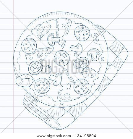 Delicious pizza with salami, mushrooms and olives. Pizza hand drawn on notebook paper in line background. Pizza vector sketch illustration.