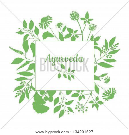 Fresh herbs store emblem. Green square frame with collection ayurveda plants. Silhouette of branches isolated on white background