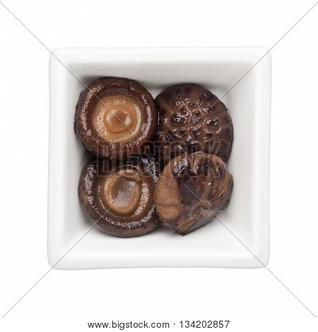Braised shitake mushrooms in a square bowl isolated on white background