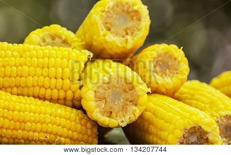 Corn on the cob. Seasonal sweet food. Fruit and vegetable. Sweetcorn scene. Vibrant colors.