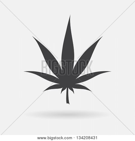 Marijuana icon. Cannabis icon vector. Marijuana leaf sign isolated on white background. Medical cannabis logo. Legalize symbol. Simple Leaf silhouette. Flat design vector illustration.
