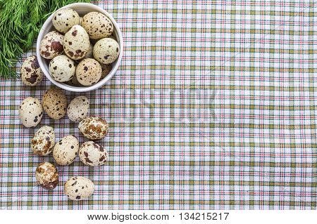 Quail eggs in a white bowl and a scattering of eggs and fresh herbs on a light background