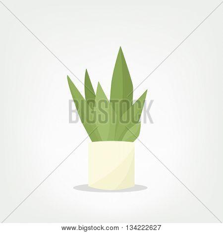 cartoon vector pot plant