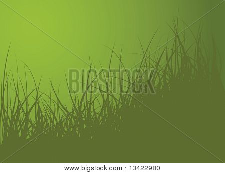 grüne Vektor Gras Hintergrund