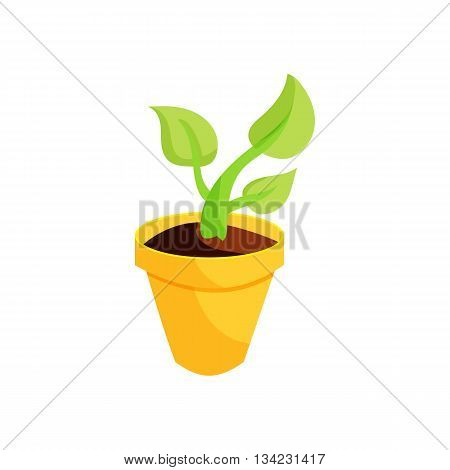 Green plant in a yellow pot icon in cartoon style on a white background