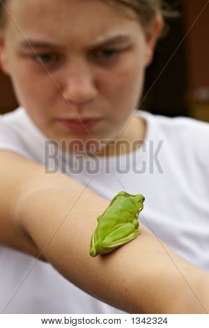 Frog On Arm