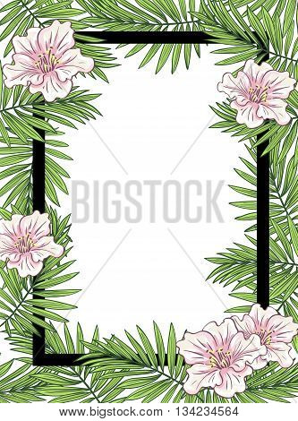 Aloha Hawaii illustration, palm leaves with flowers and black frame on the white background.