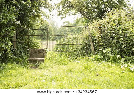 Concrete stile leading to the next field over a metal fence