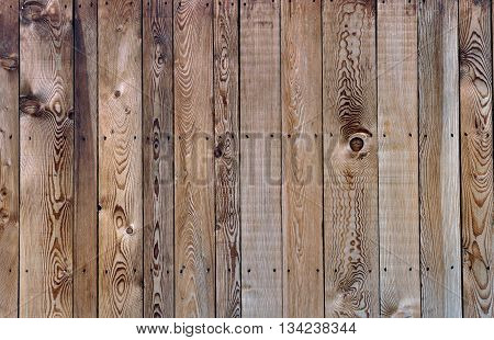 horizontal natural pine plank panel on  background