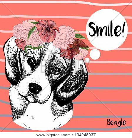 Vector close up portrait of beagle dog girl wearing the flower wreath. Hand drawn domestic pet dog illustration. Isolated on Peach echo background with grey stripes.