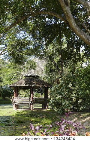 wooden gazebo beside the pond in the park