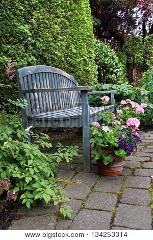 Rustic wooden garden bench and pink geraniums