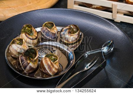 Prepared snails with garlic and parsley in black plate