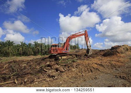 SANDAKAN, MALAYSIA - 14 JUNE 2016: Deforestation. Destruction of natural rainforest environment for oil palm plantations.